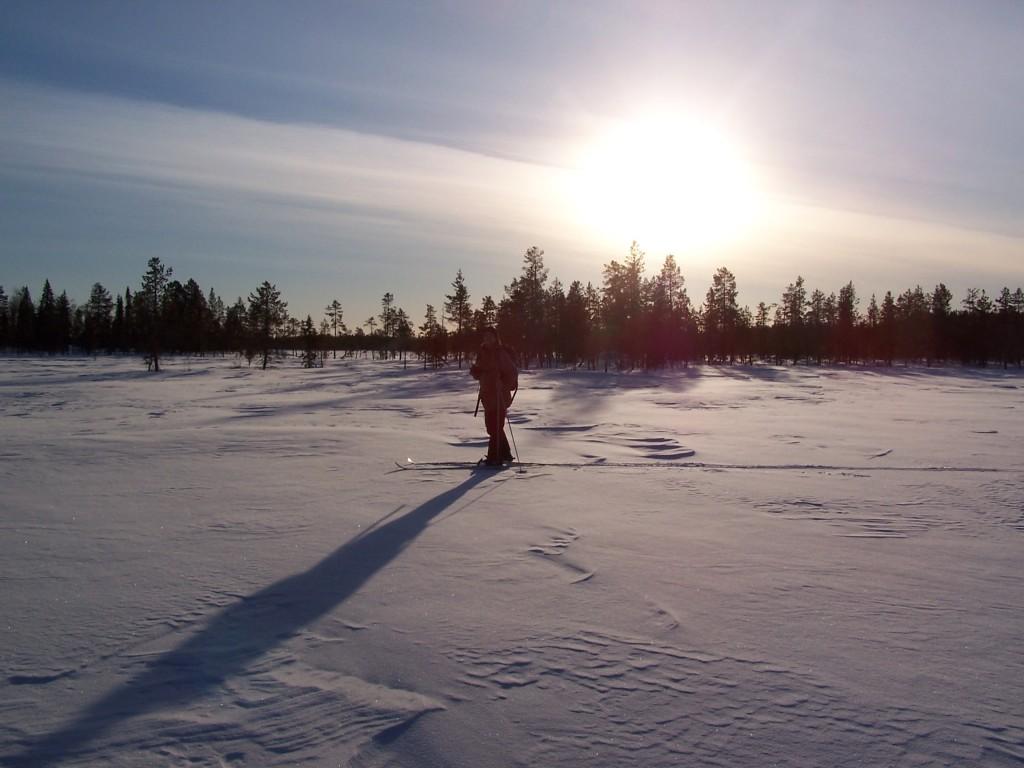 Marecages laponie neige