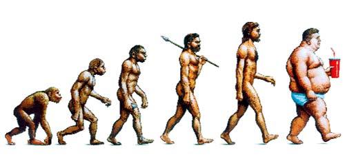 Evolution de l'humanité