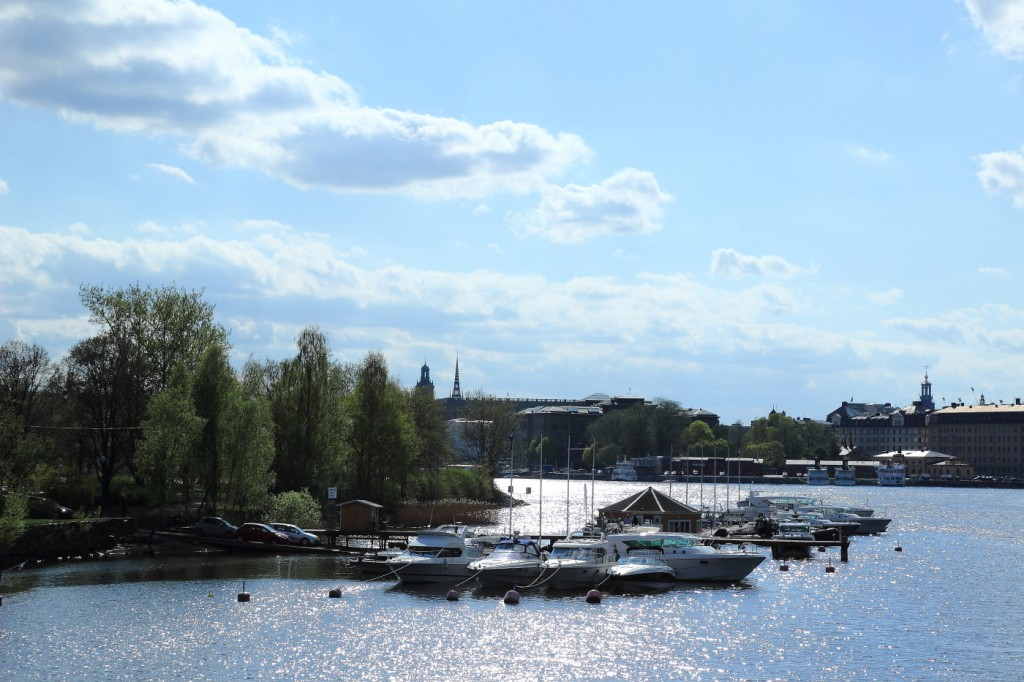 Sur Djugården