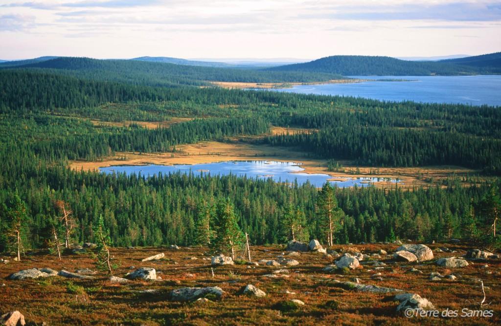 Paysages de Laponie