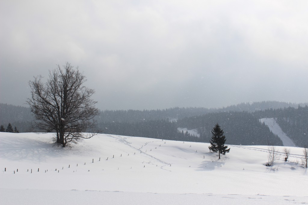 Tempete de neige a Bellefontaine