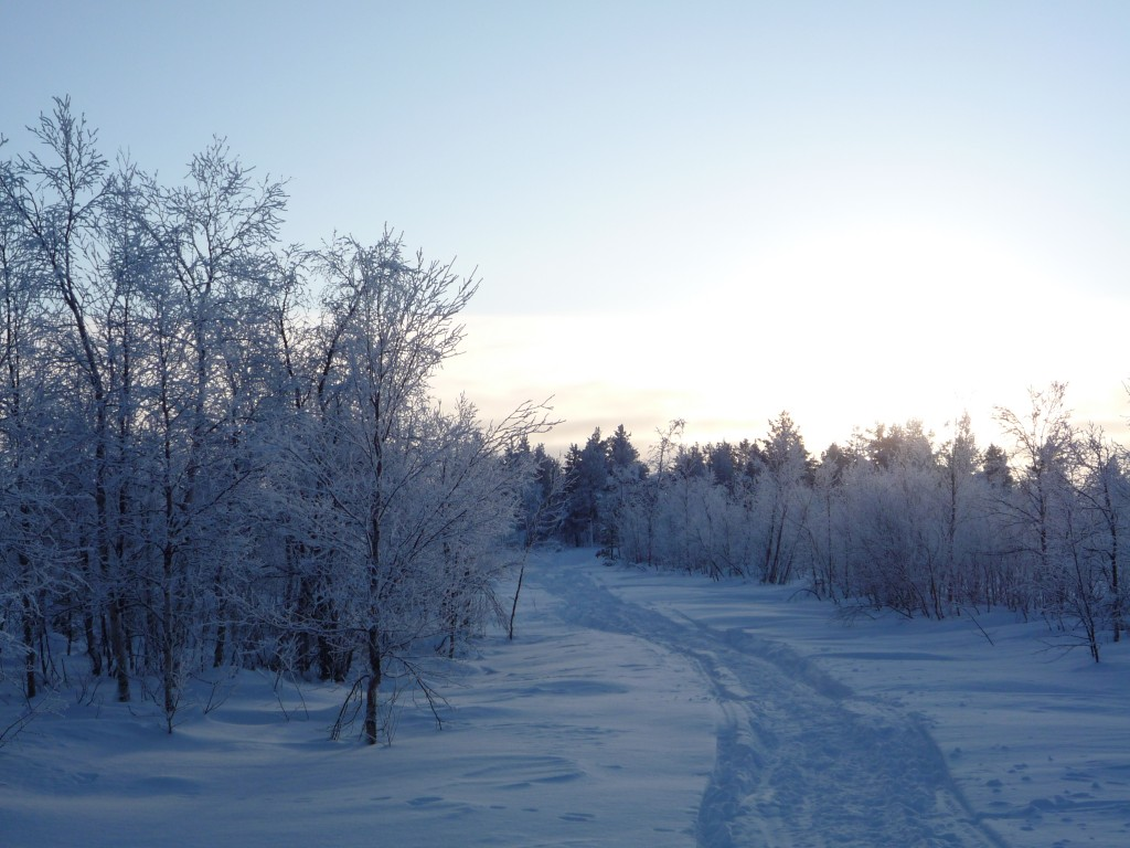 chemin de neige laponie