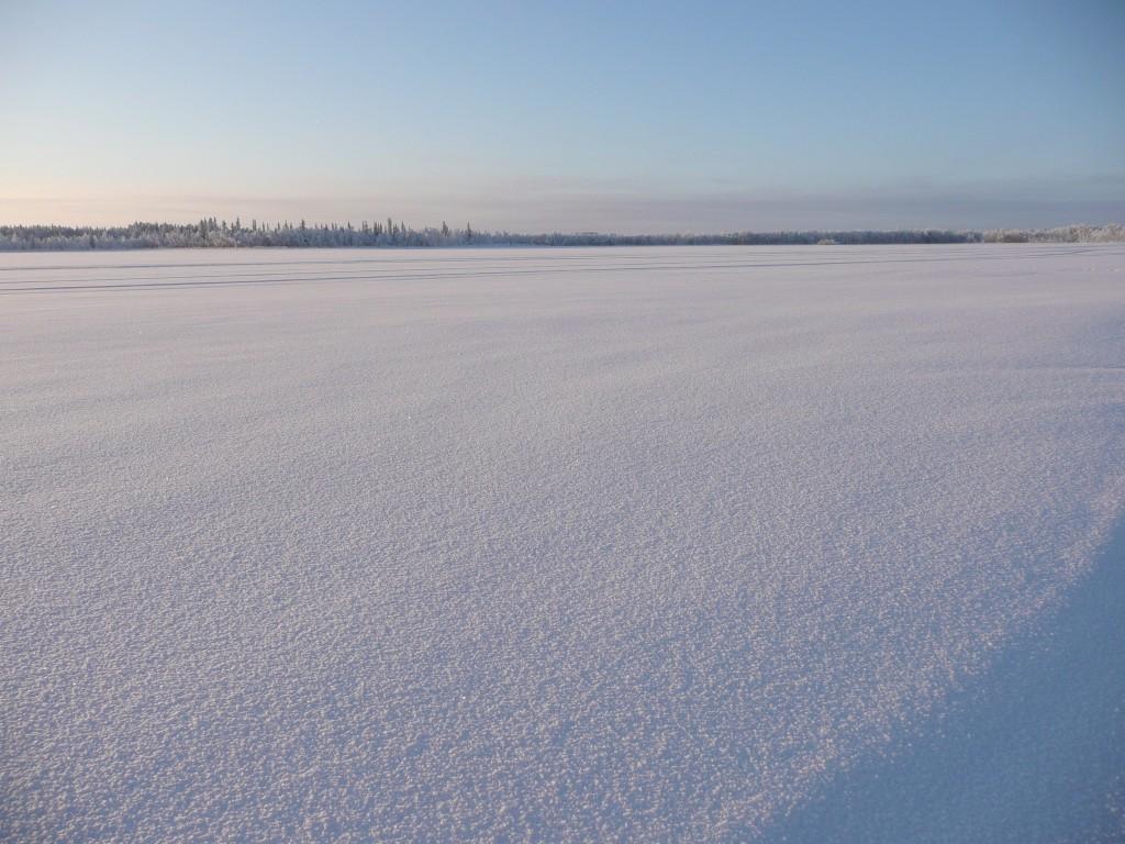pureté de la neige Laponie
