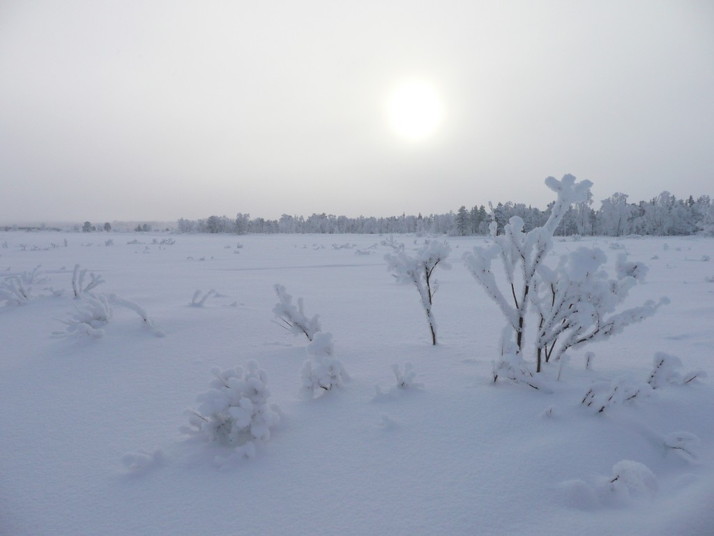 traces de glace
