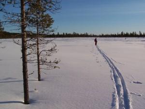 traces ski laponie