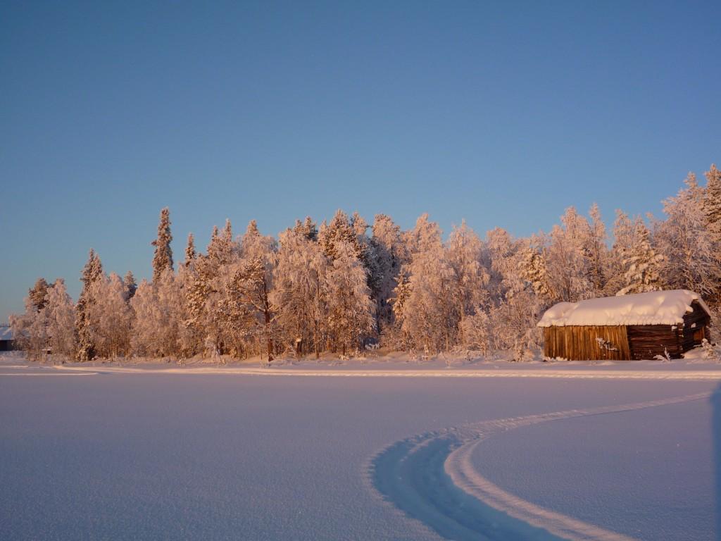 traces sur neige vers maison