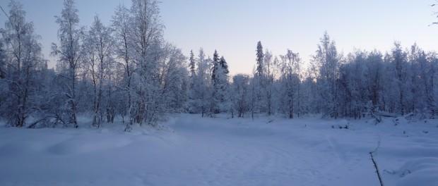 Lac en Laponie