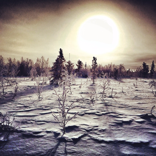 IPhotos Instagram Carnets Nordiques