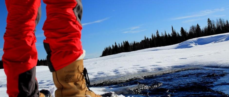Pantalon softshell jack wolfskin