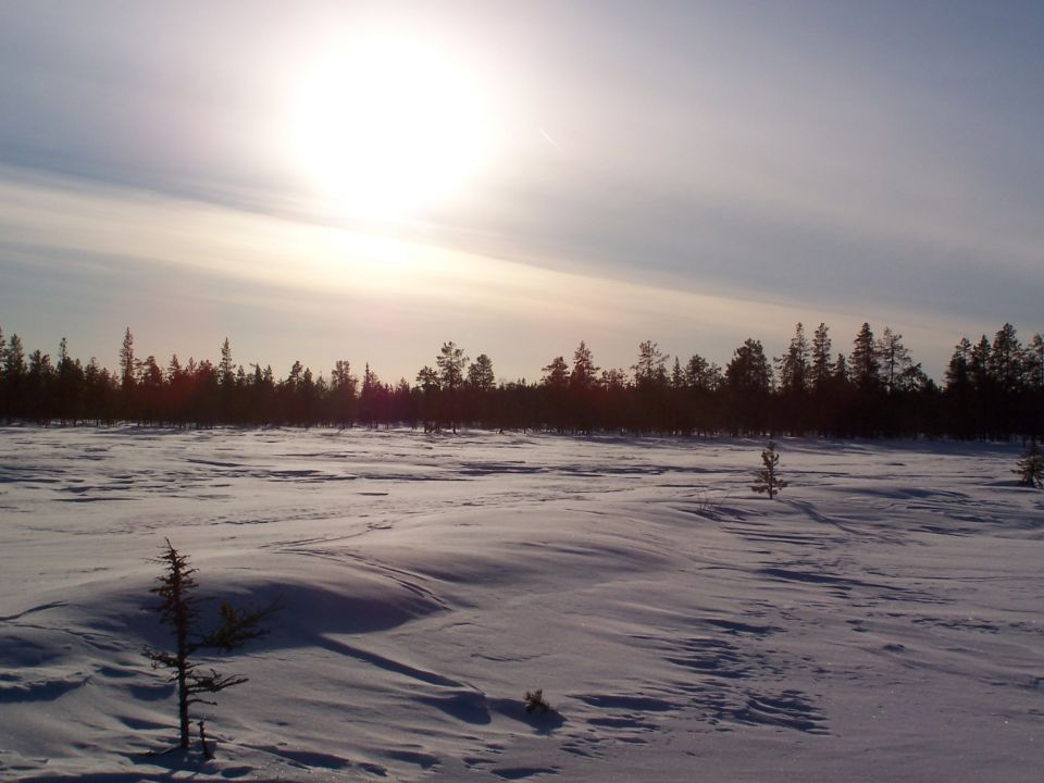 ski de randonnée nordique toundra