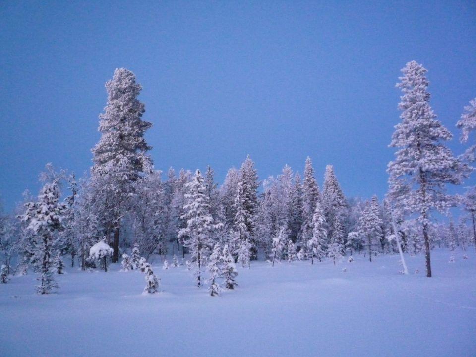 fin de journée pendant randonnée en ski en Laponie