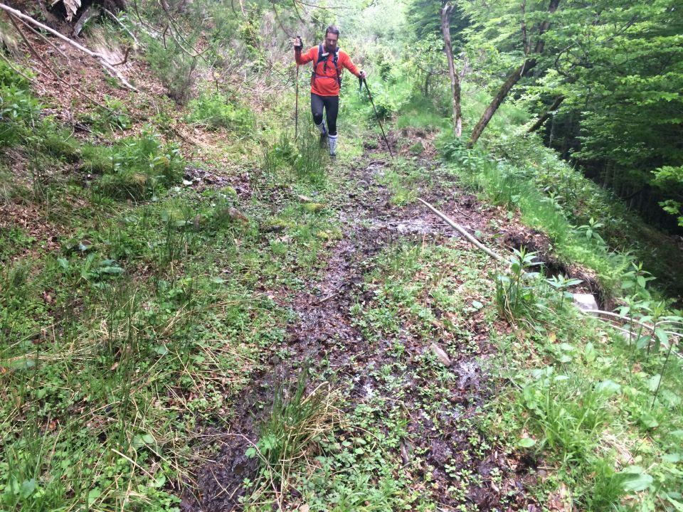 boue dans foret trail cantal