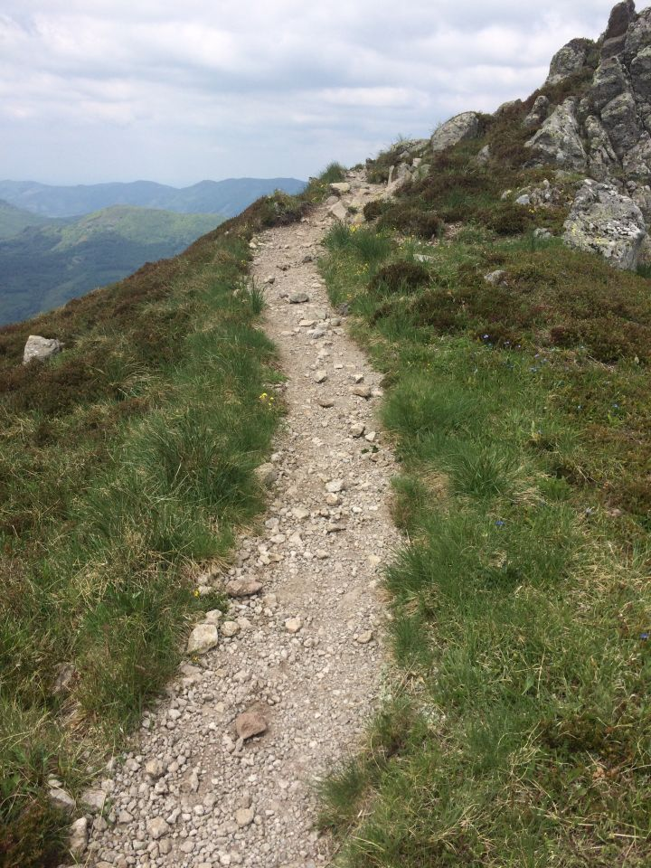 denivelé trail cantal