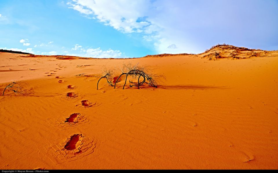 Desert Utah (c) Moyan Brenn