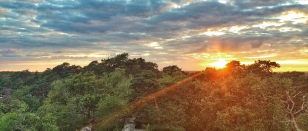 Coucher de soleil sur Forêt de Fontainebleau