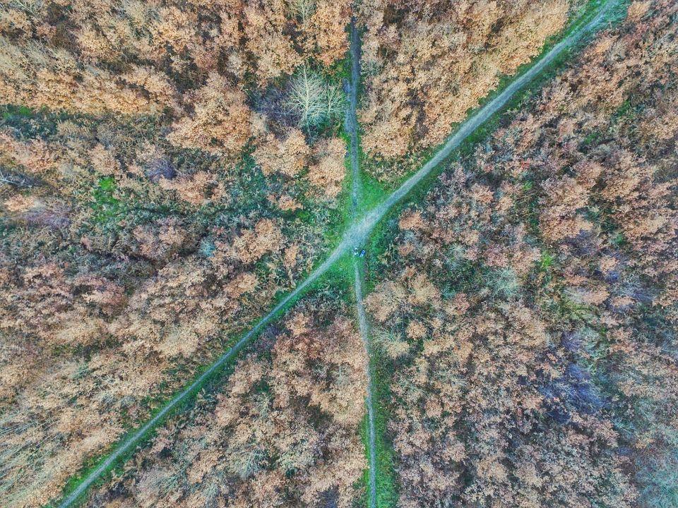 drone dji route foret bois le roi