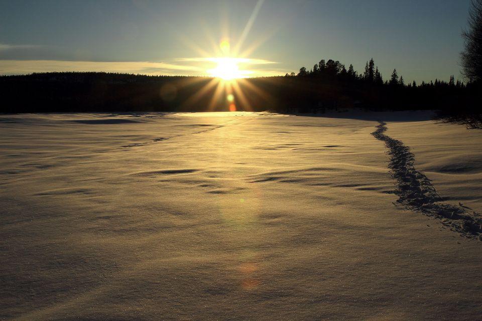 Laponie2014_0040