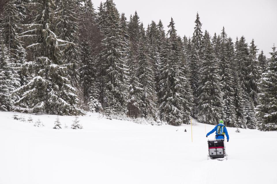 Poussette ski thule cougar