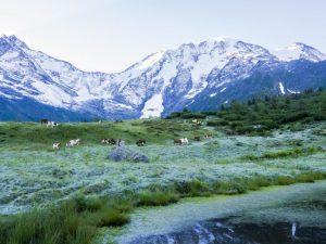 Alpes_Saint-gervais_Mont-blanc_1_291