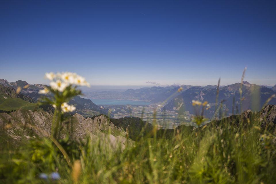 Trail_portesdusoleil_montagne_paysages_63