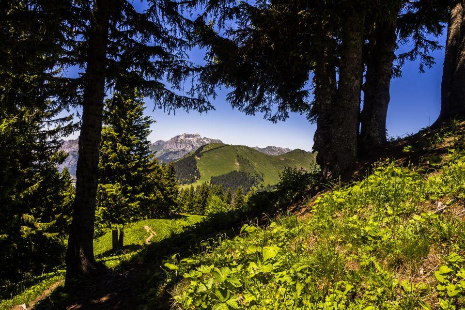 Trail_portesdusoleil_montagne_paysages_87