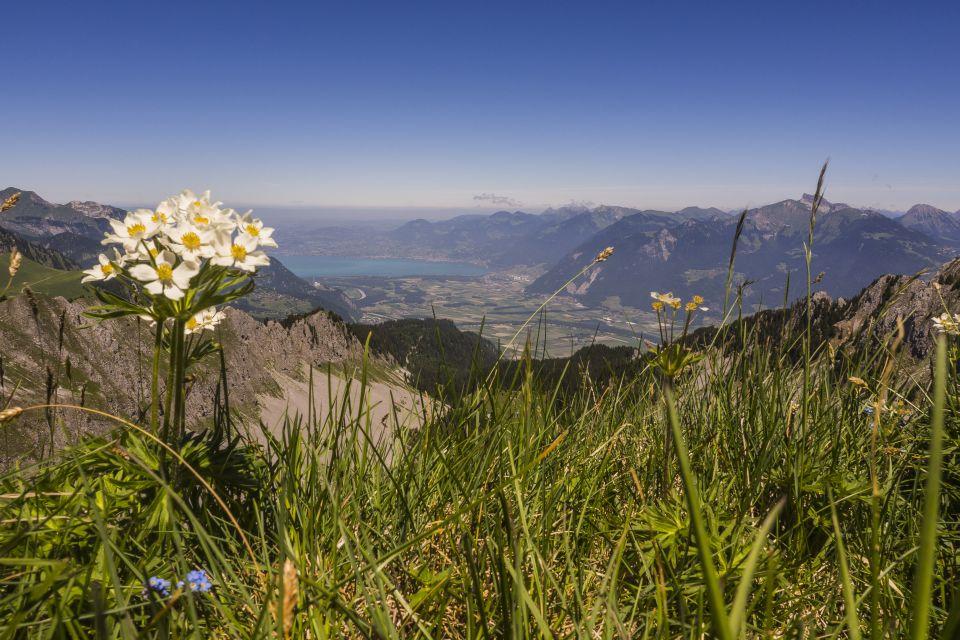 Trail_portesdusoleil_montagne_paysages_60