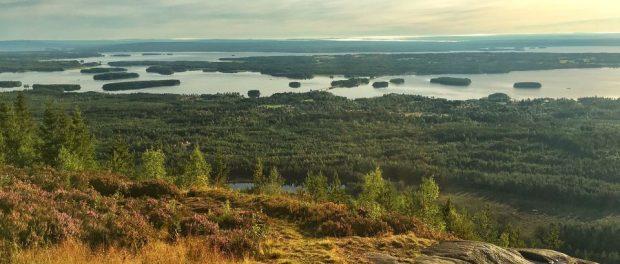 vue depuis gesundaberget sur le lac siljan en suède