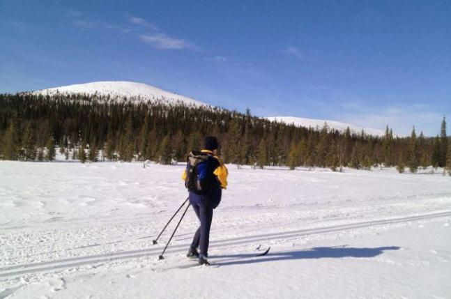 ski de fond laponie finlandaise